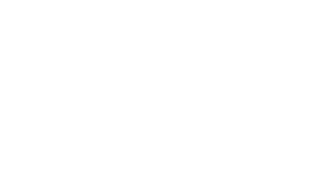 graves law pllc logo white